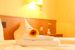 Hotelpension zum Gockl, Гостевые дома  Аллерсхаузен - big - 13