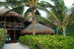 Cabañas La Luna, Hotel  Tulum - big - 126