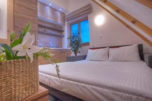 Villa Natural Wood, Ferienwohnungen  Zlatibor - big - 29