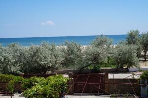 ELLi beach apartments