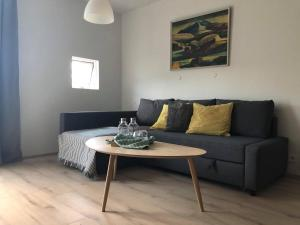 Cozy and charming apartment in Reykjavík. Free parking.
