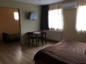 Pensiunea Casa Diaspora, Bed and Breakfasts  Târgu Jiu - big - 43