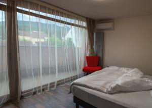 Q Apartments, Apartments  Braşov - big - 39