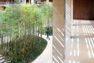 Hyatt Regency Beijing Wangjing, Szállodák  Pejcsing - big - 20