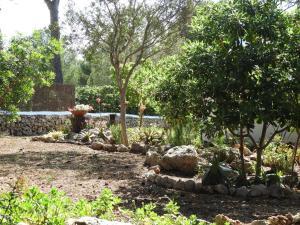 Villa ROSYMAR, Vily  Son Parc - big - 33