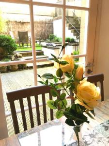 City Apartment with Garden, Appartamenti  Edimburgo - big - 10