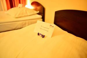 Hotel Ciric, Отели  Яссы - big - 10