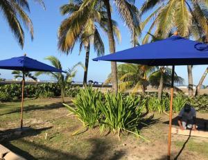 Apartamento de una Habitación En Morros Epic, Appartamenti  Cartagena de Indias - big - 47
