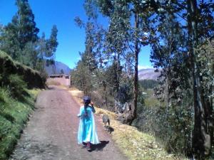 Eco- Albergue Amalai, Inns  Maras - big - 12
