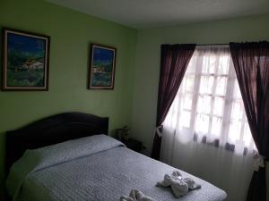 La Villa Río Segundo B&B, Bed and breakfasts  Alajuela - big - 6