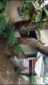Neelam Niwas, Prázdninové domy  Panchgani - big - 2
