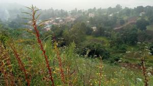 Neelam Niwas, Prázdninové domy  Panchgani - big - 4