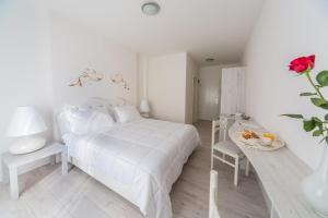 Double Room Basanija 15427l