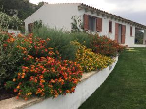 Villa fiorentini - AbcAlberghi.com