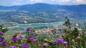 Loft Monte Peller - AbcAlberghi.com