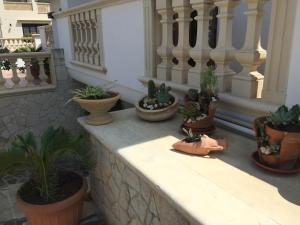 Casa Vacanza Zia Dani, Дома для отпуска  Кастро-ди-Лечче - big - 4
