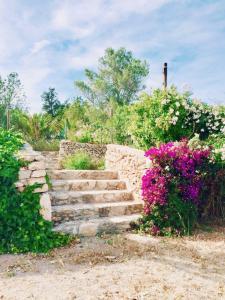 Can Mateu, Ferienhäuser  Sant Mateu d'Albarca - big - 19