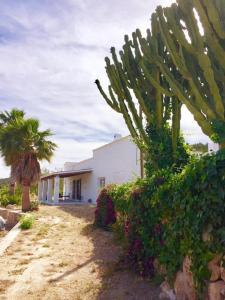 Can Mateu, Ferienhäuser  Sant Mateu d'Albarca - big - 1