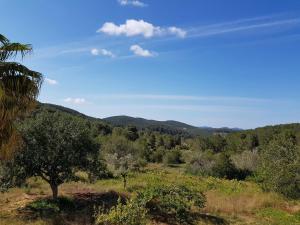 Can Mateu, Ferienhäuser  Sant Mateu d'Albarca - big - 7