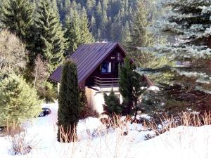 Chata Ski Jasna, Holiday homes  Demanovska Dolina - big - 18