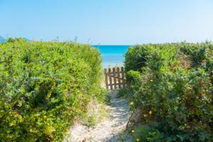 Blancarena, Nyaralók  Playa de Muro - big - 11