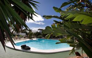 Apartamentos Hg Lomo Blanco, Apartments  Puerto del Carmen - big - 24