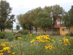 La Candelaria, Penziony – hostince  La Quiaca - big - 28