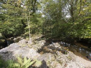 The Shepherdess Hut, Lydford