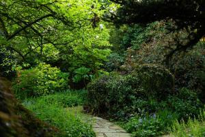 Moss Wood Lodges