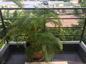 Waen Petch Place Hotel, Hotel  Ubon Ratchathani - big - 35