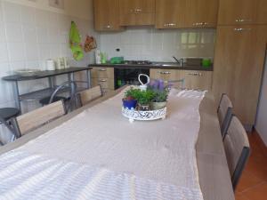 Villa Azzurra, Holiday homes  Capo Vaticano - big - 1