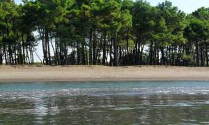 Black Sea Beach House, Case vacanze  Grigoleti - big - 37