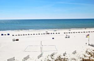 San Carlos 502 Condo, Apartments  Gulf Shores - big - 7