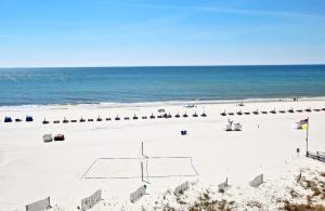 San Carlos 502 Condo, Ferienwohnungen  Gulf Shores - big - 7