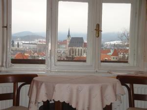 Ubytování Jelínková, Guest houses  Český Krumlov - big - 4