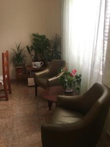 Apartment Flower, Apartmány  Radanovići - big - 19