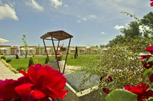 Di Mare Holiday Village, Holiday parks  Kranevo - big - 29