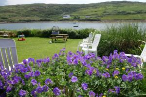 Ocean Villa Country Home, Bed and Breakfasts  Clifden - big - 53