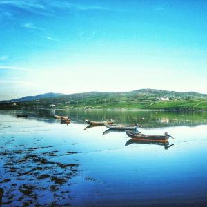 Ocean Villa Country Home, Bed and Breakfasts  Clifden - big - 50