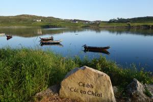 Ocean Villa Country Home, Bed and Breakfasts  Clifden - big - 19
