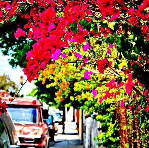 Malaga Beach Holidays, Хостелы  Ринкон-де-ла-Викториа - big - 38