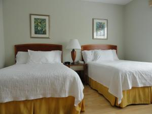 Viscay Hotel(Miami Beach)