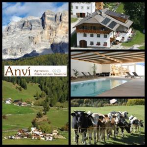 Agriturismo Anví - AbcAlberghi.com