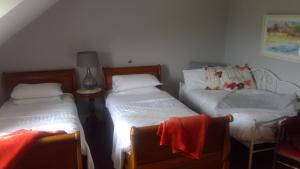Fiuise B&B, Bed & Breakfast  Dingle - big - 17