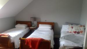 Fiuise B&B, Bed & Breakfast  Dingle - big - 18
