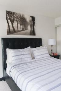 N2N Suites - Downtown City Suite, Ferienwohnungen  Toronto - big - 54
