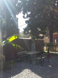 Guesthouse on Kiparisovaya alleya 5, Pensionen  Pizunda - big - 52