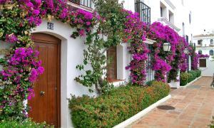 Macdonald Villacana, Apartments  Estepona - big - 13
