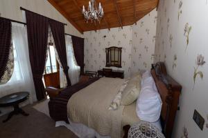 Domus Mare Hotel, Hotely  Viña del Mar - big - 6