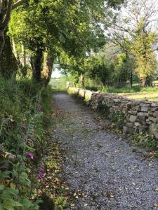 Clondanagh B&B and Farm-on-the-Lake, Bed and breakfasts  Tulla - big - 67